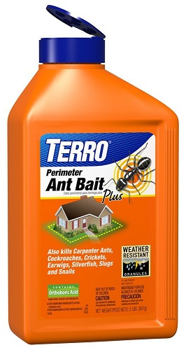 Best Ant Killers Reviews