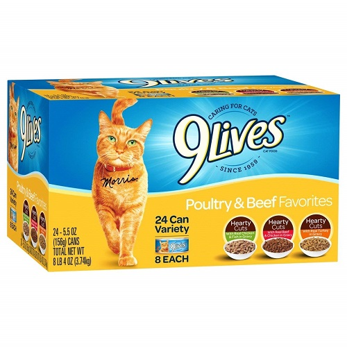 The Best Wet Cat Food to Feed Your Cat