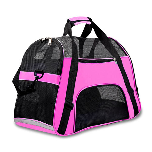 All You Need To Know About Choosing The Best Pet Carrier 5