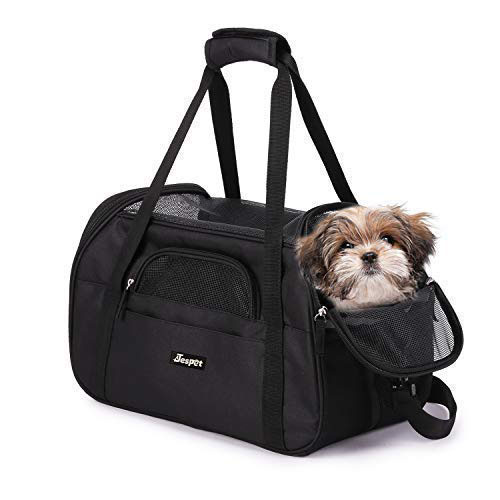 All You Need To Know About Choosing The Best Pet Carrier 3